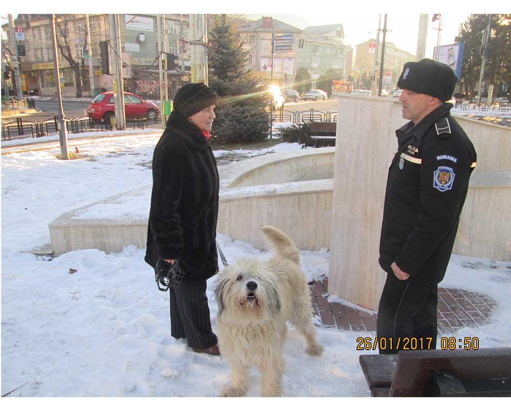 politia locala caini