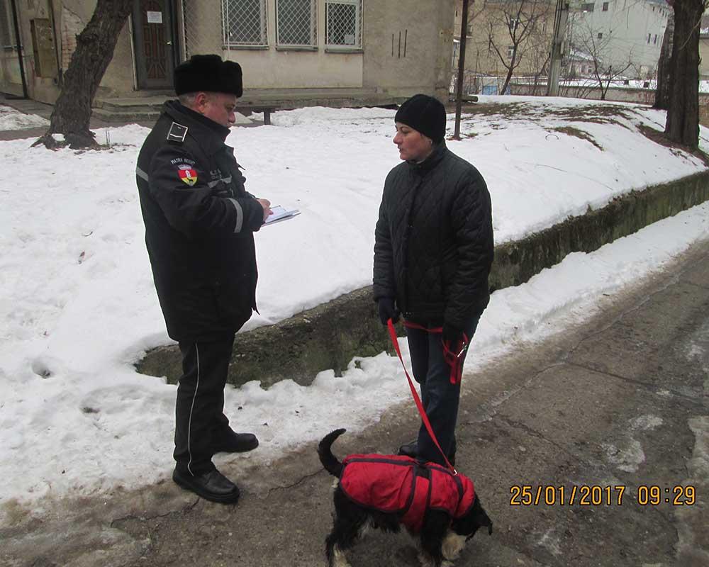 politia locala caini1