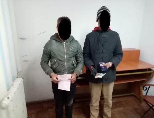 Poliția Locală Piatra Neamț: Tineri depistați că locuiau în beci și minori fugiți din Centrul de Plasament