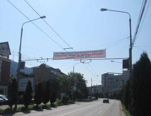 POLIȚIA LOCALĂ PIATRA NEAMȚ: Iată în ce condiții se pot amplasa mijloacele publicitare temporare!