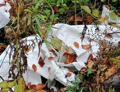 Politia Locală Piatra Neamț: Sancțiuni aplicate de lucrătorii silvici, pentru aruncarea de deșeuri la poalele pădurii.
